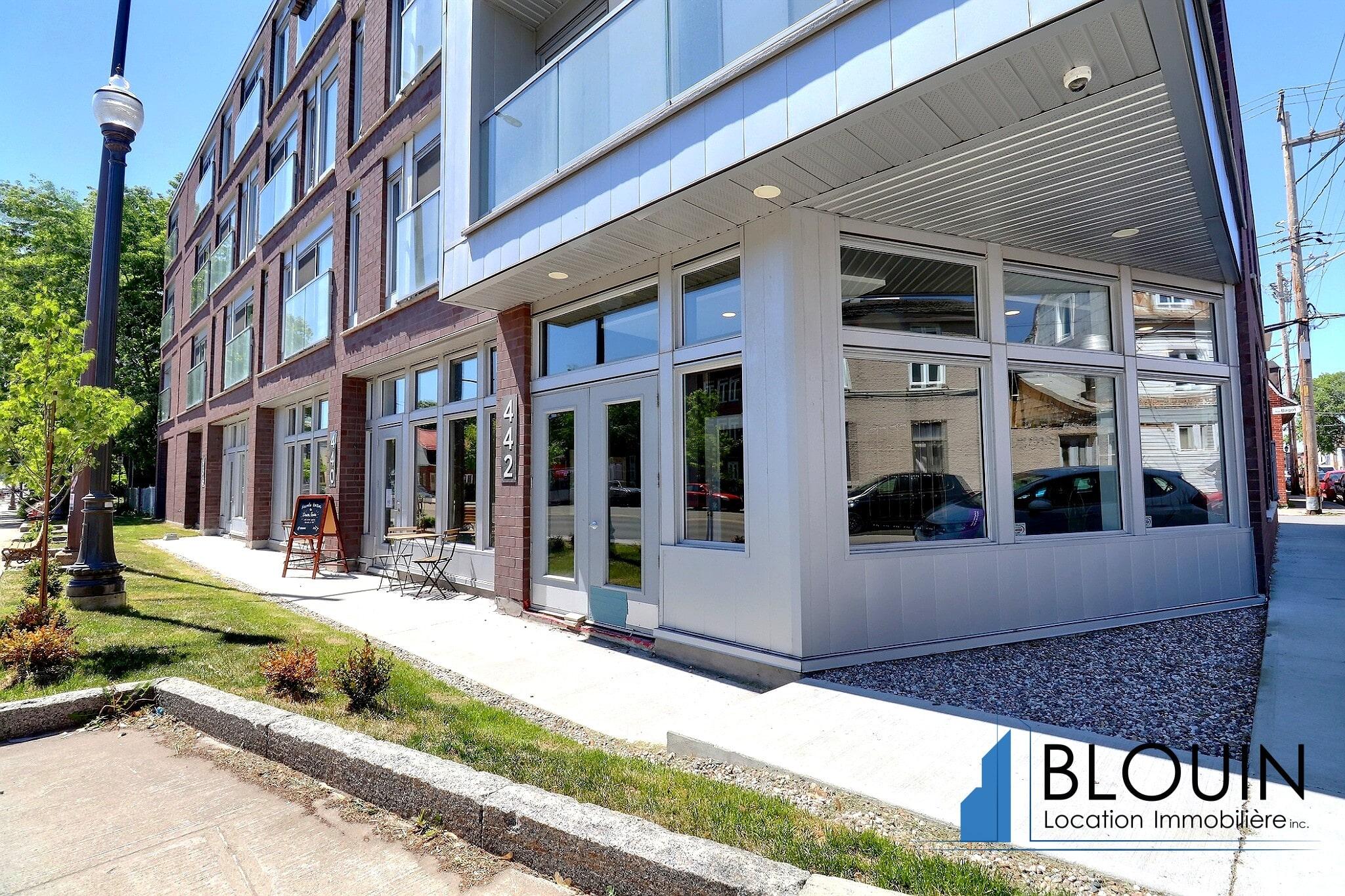 Photo 10 : 3 ½ Moderne à St-Sauveur, libre pour Juillet, Terrasse sur le toit & Stationnement intérieur